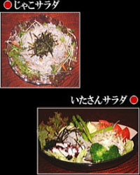 ≪酢の物・サラダ≫